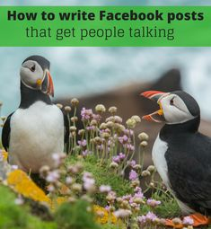 Facebook Business, Business Pages, People Talk, Infographic, Social Media, Posts, Writing, Tips, Blog