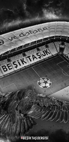 Galaxy Wallpaper, Mobile Wallpaper, Black Eagle, Another Love, Football Stadiums, Darwin, Eagles, Emo, Black And White