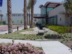 SQLA Inc. // Mercury Arts Center Commercial Landscape Design, Mercury, Sidewalk, Plants, Art, Art Background, Side Walkway, Kunst, Walkway