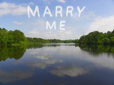 Wedding Proposal Idea Wedding Photography by SeaTheForestPhotoArt