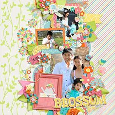 set 196 by cindy schneider  blossom by amber shaw  blossom cards by amber shaw ·