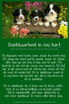 Angel Prayers, Goeie More, Afrikaans Quotes, Good Morning Wishes, Thankful, Blessed, Birthday, Nature, Inspiration