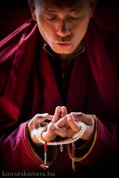 Kis-Tibet – Időutazás a világ tetején – Világutazó Gautama Buddha, Buddha Buddhism, Tibetan Buddhism, Dalai Lama, Tibetan Symbols, Tibetan Art, Buddhist Meditation, Buddhist Monk, Freedom Is A State Of Mind