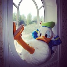 Donald Duck. ❣Julianne McPeters❣ no pin limits