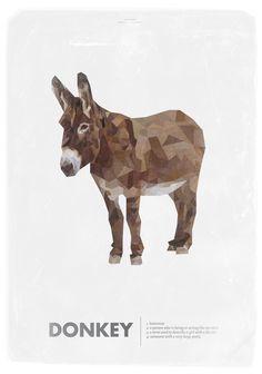 Animal slang,Donkey