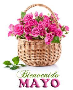 Bienvenido+Mayo+día+de+las+madres+10+de+mayo+postales+con+mensajes+2.png (900×1101)