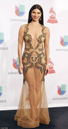 Roselyn Sanchez stole the show in a very revealing sheer gown that left little to the imagination at the Latin Grammys i#dailymail:
