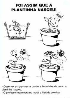200 Atividades para a Primavera: lembranças, sugestões, desenhos colorir, idéias, moldes! ~ ESPAÇO EDUCAR