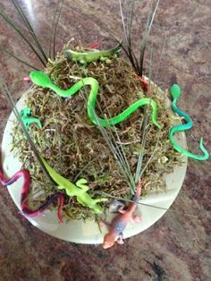 Crazy Hat Day:  Moss, lizards and snakes, oh my! Musings of a Momsomniac: Wearing Many Hats...