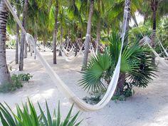 xel-ha mexico hammock garden, I need to go back one day zzzzzzz