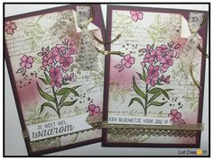 Afbeeldingsresultaat voor stampin up southern serenade Birthday Cards For Women, Hand Stamped Cards, Stampin Up Catalog, Get Well Cards, Pretty Cards, Scrapbook Cards, Scrapbooking, Stamping Up, Creative Cards