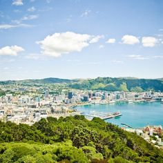 Work in Tech? New Zealand Will Pay to Help You Move.   Wellington is flying tech talent out for interviews—and hoping to offer 100 jobs.