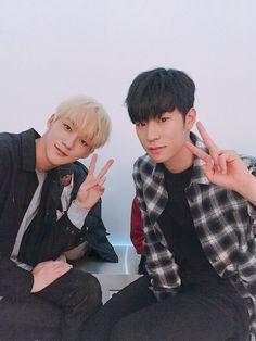 Imagen de tinkerbell, knk, and seungjun