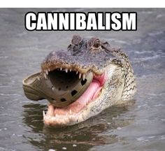 Cannibalism it's what's for dinner