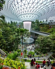 The new airport in singapore ? Find out when we have more -. Singapore Garden, Baby Clothes Brands, Interesting Buildings, Pallets Garden, Futuristic Architecture, Holiday Destinations, Water Features, Botanical Gardens, Beautiful Landscapes