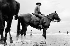 Marina Beach, Chennai, Horses, Urban, Black And White, Street, Places, Animals, Animales