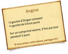 Origan compact : Aérophagie, voies respiratoires et cellulite