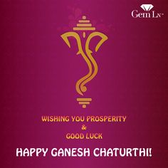 Wishing You All a Prosperous & Successful Year! Happy Ganesh Chathurthi!  20% + 5% OFF! Offer Ends Sunday, August 31st.  #GemLN  #GemLn1stAnniversary #AnniversarySale #Discount  #GaneshPuja