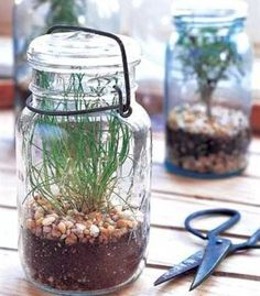 Vintage Mason Jar Terrarium | 14 DIY Plant Terrarium Ideas | Mini Terrariums You Can Make Yourself see more at https://diyprojects.com/14-diy-plant-terrarium-ideas-mini-terrariums-you-can-make-yourself