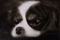 Cute Spaniel puppy oil painting