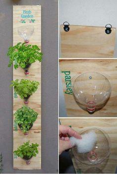 Reciclagem - madeira + garrafas pet mini horta de parede