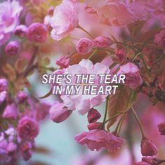 Tear In My Heart   twenty one pilots