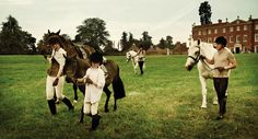 horse riding in hampshire