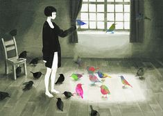 birds and light