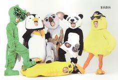 Oh my Taec is Ok cat, Nhun is a koala and Woo is a baby chick xD❤️ Yazoo 2PM