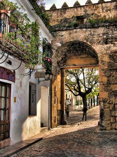 Córdoba, Spain, by Jose Luis Perez, via Spain Places To Visit, Beautiful Places To Visit, Wonderful Places, Places To Go, Beautiful Streets, Beautiful World, Poster Photography, Spain And Portugal, Spain Travel