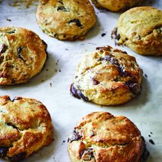 Chocolate Pecan Scones from Barefoot Contessa. Preheat the oven to 400 degrees. Arrange two racks evenly spaced in the oven. Line two sheet pans with parchment… Food Network Recipes, Cooking Recipes, Cooking Network, Homemade Scones, Homemade Breads, Homemade Chocolate, Chocolate Pecan Recipe, Chocolate Desserts, Breakfast Recipes