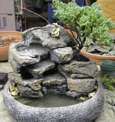 http://naturalcreations.com/shop/feng-shui-meditation-fountains/live-bonsai-tabletop-fountain-cd72/