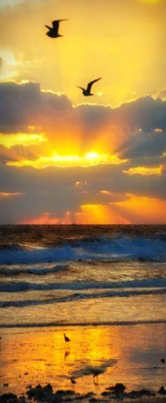 Ohhhhhhhh!!!!!!!!!! .... ::tuggin on sleeve:: ............... LOOK at that Sunrise in Florida!