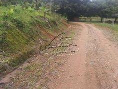 Terreno no bairro Rio Cerro II em Jaraguá do Sul, às margens da rodovia SC 110, ideal também para construção de galpões industriais.Área = 20.000m²Frente = 59mValor = R$180.000,00