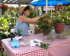 Jennifer's presentation on drying and preserving herbs.