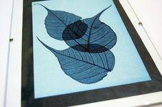 Cyanotype printing tutorial.