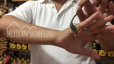 Our first #traveldiary of our trip to #Huatulco #Mexico, where we ate grasshoppers + played with scorpions! #travel #travelmexico #scorpions #travelvlog #travelblogger