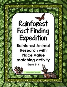 Rainforest Animal Trading Cards | Trading cards, Rainforests and Birds