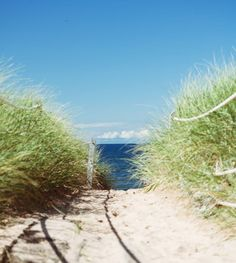 "Natalie Fournier (@nataliekfournier) added a photo to their Instagram account: ""Currently pretending I'm at the beach... . #raw_canada #explorepei"" Prince Edward Island, Country Roads, Canada, Explore, Beach, Instagram, Seaside, Beaches, Exploring"