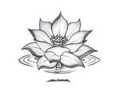 minus water ripple, and change the bud_ _ Black lotus tattoo design Black Lotus Tattoo, Lotus Tattoo Design, Flower Tattoo Designs, Lotus Design, Flower Designs, Flower Drawing Tumblr, Lotus Drawing, Flower Sketches, Drawing Flowers