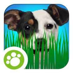#AppyReview by Jackie Bryla @appymall Animal Planet Hide Here is an app that will engage both child/student and parent/teacher.  With the great learning option with 'ready made' questions for discussion and the engaging activities, you are sure to have fun!  Learn the habitats (homes) of the animals and which items might go along with a specific animal.  Color the pages or do a memory matching game.  The music selection is fun too. T