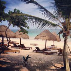 Rosa del Viento hotel, Tulum Flying in next week...