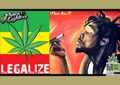An iconic Tosh song that advocates #marijuana. @Hash_Brothers #games #boardgames #CO #Pot #MJ #MMJ #Trivia #Fun #Marijuana #Weed #Dabs #Stoners #Hash #High #Pipes #Lighters @WeedLifeNetwork #stoned #Stoner #ganja #fourtwenty #Chronic #Dope #Dab #Stash #Spliff #OR #WA #AK #DC #legalizeit @IndyRecords