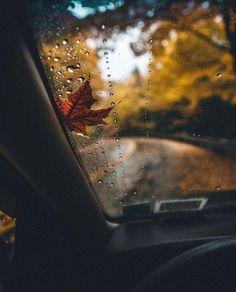 autumn, fall, and rain image Autumn Photography, Creative Photography, Halloween Photography, Photography Uk, Photography Portraits, Photography Camera, Autumn Cozy, Autumn Fall, Rain Fall