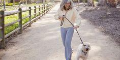 old woman walking a dog - Google Search