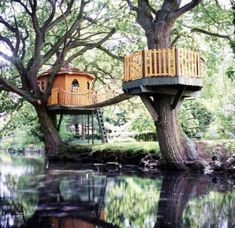 Treehouse in Kerala, India   - Unique And Creative Tree Houses