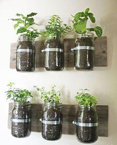 """Foto: Reprodução / <a href=""""http://www.notjustahousewife.net/2011/08/mason-jar-wall-planter.html"""" target=""""_blank"""">Not Just a Housewife</a>"""