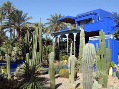 Jardin de Majorelle - Marrakech - Maroc