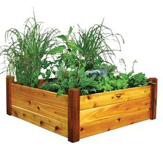16 best rectangular planters images window boxes trough planters rh pinterest com