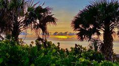 Boca Raton Beach, Sunrise Pictures, Us Beaches, South Florida, Modern Contemporary, Landscaping, Ocean, Celestial, Sunset